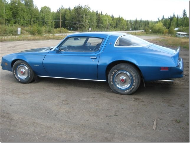1978 Firebird, owned by Bill Turner